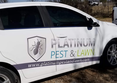 Find The Best Pest Control In Tulsa