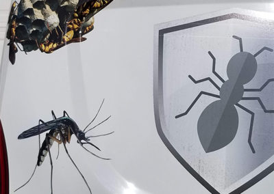 Exterminator Tulsa