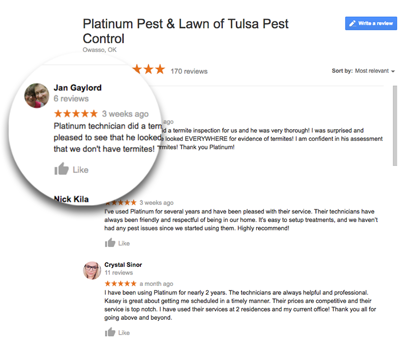 Platinum Pest And Lawn Landing Google Reviews
