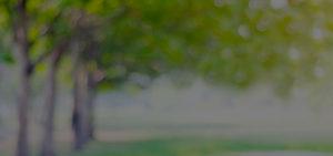 Tulsa pest control Platinum Pest And Lawn Landing Testimonial Background