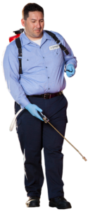Tulsa pest control Spraying man