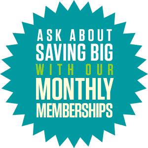 Tulsa Pest Control Starburst Monthly Memberships